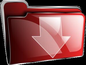 Download 2020 Demo Team Registration Form